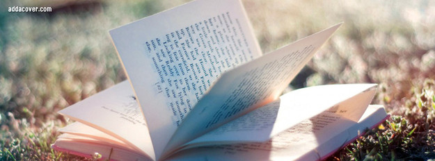 18529-reading-out-in-the-sun